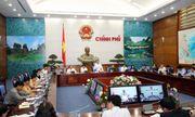 Tịch thu xe: Phó Thủ tướng hé mở giải pháp mới