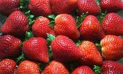 Danh sách rau quả nhiều và ít thuốc trừ sâu nhất 2016