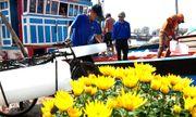 Hàng nghìn ngư dân miền Trung đón tết trên biển