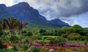 10 khu vườn đẹp nhất thế giới