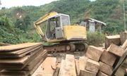 Clip: Hàng chục mét khối gỗ chôn gần xưởng mộc