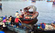Kiểm tra, giám sát môi trường tại Khu kinh tế Nghi Sơn