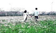 """""""Mê mẩn"""" với 3 địa điểm chụp ảnh đẹp ở ngoại thành Hà Nội"""