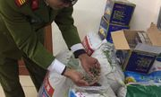 Sát Tết, hàng hóa Trung Quốc liên tục tràn vào Việt Nam