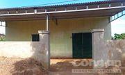 Kỷ luật trưởng phòng kinh tế huyện để dân xây nhà trái phép