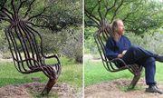 Kỳ lạ chàng trai khởi nghiệp bằng nghề 'trồng ghế'