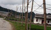 Người dân dùng cọc tre dẫn điện về nhà