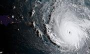 Siêu bão mạnh nhất trong 30 năm chuẩn bị đổ bộ Mỹ