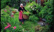 Cuộc sống thần tiên của nữ họa sĩ 92 tuổi