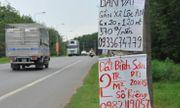 Xung quanh sân bay Long Thành: Bán bánh mỳ, xe ôm cũng làm