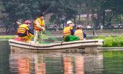 Quây lưới nhốt thiên nga giữa hồ Thiền Quang để tránh trộm?