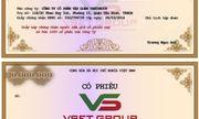 Tập đoàn VSETGROUP phát hành cổ phiếu, trái phiếu năm 2018