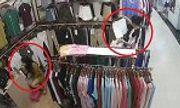Video: Nhân viên mải mê trang điểm, khách nữ thản nhiên bỏ quần áo vào túi rồi