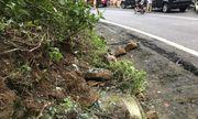 Vụ tai nạn ở đèo Hải Vân: