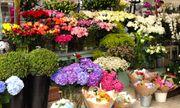 Mua hoa tươi dịp Tết: Cẩn trọng 'trúng độc'