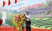 Tổng Bí thư, Chủ tịch nước Nguyễn Phú Trọng phát động 'Tết trồng cây đời đời nhớ ơn Bác Hồ'