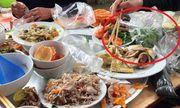 Chuyện lạ ở Nam Định: Chủ nhà bị phạt 3 triệu đồng nếu để