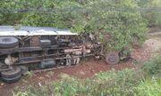 Đồng Nai: Ô tô 7 chỗ tông xe tải chở rau, 3 người thiệt mạng