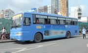 TP.HCM: Đấu giá quảng cáo trên xe buýt để thu 135 tỷ/năm nguy cơ