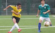 Giải bóng đá Báo NTNN/Cúp Mùa Xuân 2019: Báo ĐS&PL