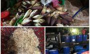 TP HCM: Ngó sen, hoa chuối ngâm tẩm hóa chất độc hại, chờ ra thị trường