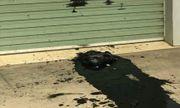 Công ty taxi bị uy hiếp bằng chất bẩn hôi thối trước cổng trụ sở mới