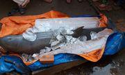 Ngư dân đòi 40 triệu mới giao xác cá heo nặng 150kg
