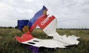 Khởi tố 4 nghi can liên quan đến vụ máy bay MH17 bị bắn rơi