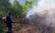 Tin tức thời sự mới nóng nhất hôm nay 24/6/2019: Trắng đêm dập lửa cứu 15 ha rừng thông ở Nghệ An