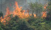 Hà Tĩnh: Cháy rừng liên tiếp, hơn 1.000 người tham gia dập lửa, di dời hơn 80 hộ dân