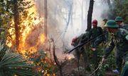 Vụ cháy rừng ở núi Hồng Lĩnh: Lửa bất ngờ đổi chiều, tiến sát khu dân cư