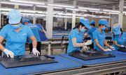 Hải quan kiểm tra 27 doanh nghiệp liên quan đến Công ty Asanzo