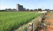 Khởi tố vụ án sai phạm về quản lý đất đai tại thành phố Phan Thiết, Bình Thuận