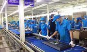 Đang kiểm tra thông quan 16 doanh nghiệp nhập khẩu hàng hóa nhãn hiệu Asanzo