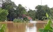 Lâm Đồng: Đi cứu hộ mưa lũ, công an viên bị lũ cuốn tử vong