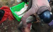 Lâm Đồng: Người dân đau đớn nhìn trại cá tầm trị giá 52 tỷ vỡ theo dòng nước