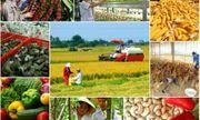 Tăng cường năng lực lao động nông thôn phục vụ khởi nghiệp nông nghiệp công nghệ cao, tham gia chuỗi giá trị nông sản toàn cầu (Phần II)