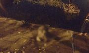 Hà Nội: Nghi vấn người đàn ông bỏ lại xe đạp nhảy xuống hồ tự tử trong đêm