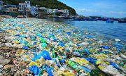 Rác thải nhựa hiểm họa đối với sự sống của con người