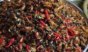 Về Lào Cai thưởng thức đặc sản có một không hai, ăn một lần cả đời nhớ mãi