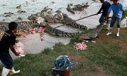 Bé trai 10 tuổi tử vong vì bị cá sấu chồm lên thuyền tấn công