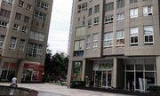 Vụ Phó Giám đốc Sở NN&PTNT Hà Nội tử vong: Công an đang điều tra