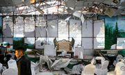 Đánh bom tại đám cưới khiến 63 người chết ở Afghanistan: Nhân chứng kể lại khoảnh khắc kinh hoàng