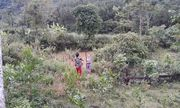 Nghệ An: Xót xa 2 chị em ruột với cành hái ổi, ngã xuống ao đuối nước tử vong