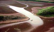 Video: Nếu rừng mưa Amazon biến mất, hậu quả sẽ ra sao?