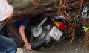Tin tức tai nạn giao thông mới nhất hôm nay 30/8/2019: Nam thanh niên đi xe máy bị cây đè tử vong
