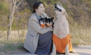 Lý do Goo Hye Sun tuyên bố rút khỏi làng giải trí sau ồn ào ly hôn chồng trẻ