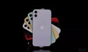 Giá bán chính thức của iPhone 11: Rẻ bất ngờ, dự báo bán rất chạy dù bị chê thậm tệ