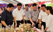 Kết nối tiêu thụ nông sản thực phẩm và ứng dụng chuyển giao tiến bộ kỹ thuật trên địa bàn Hà Nội