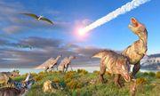 Hóa ra đây là nguyên nhân khiến khủng long dần diệt chủng